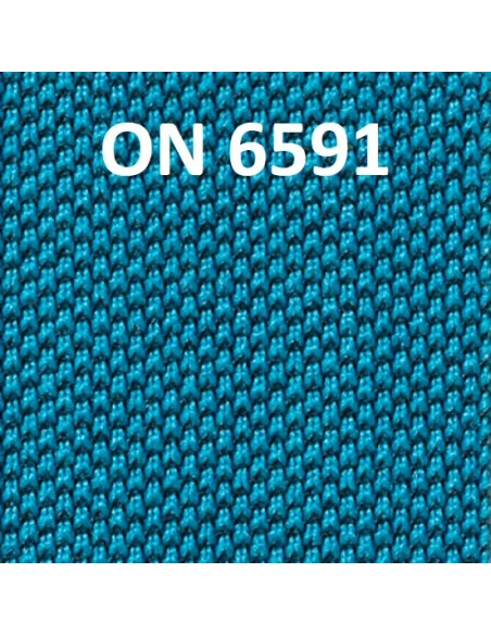COLORE ONE - ON 6591