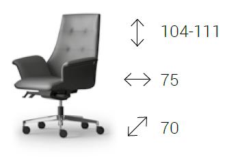 C8053 D MAXIMA